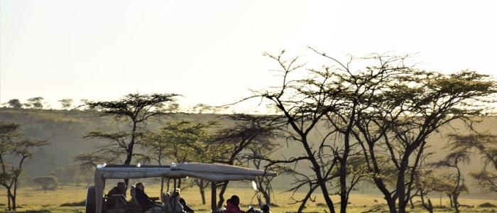 on Tour Safari in Kenia