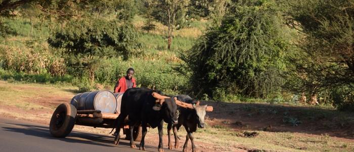 Strasse nach Arusha