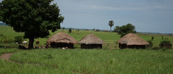 uganda-kasase-landschaft