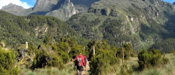 Ruwenzori-trekking-meinewelt-reisen