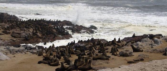 cape-cross-namibia-meineweltreisen