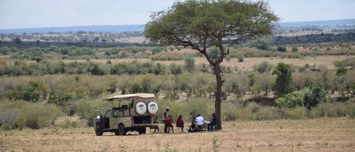 Picknick Amboseli Nationalpark