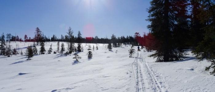 Wildnis-finnland-schnee.jpeg