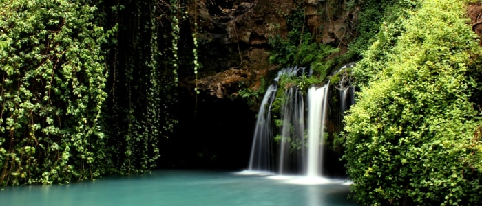 blue-pools-ngare ngrare forest