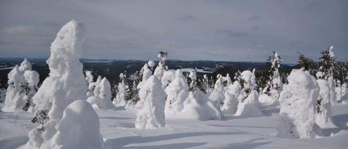 finnland-winter