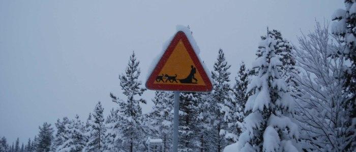 hundeschlitten-schild-schweden