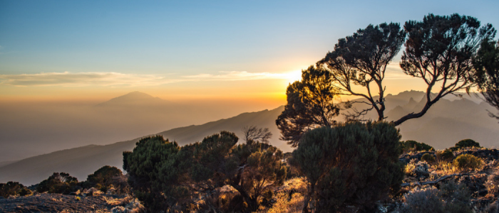 machame-trail-kilimanjaro