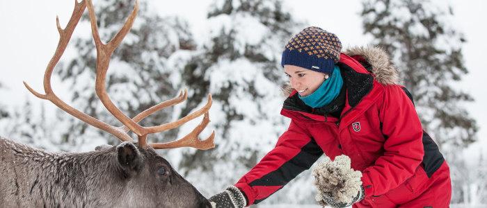 rentier-finnland-sami