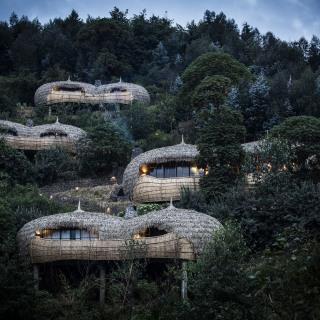 Bisate Lodge im Volcanoes Nationalpark in Ruanda