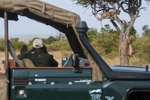 Masai Mara - ExpoDormund 2018 (13)
