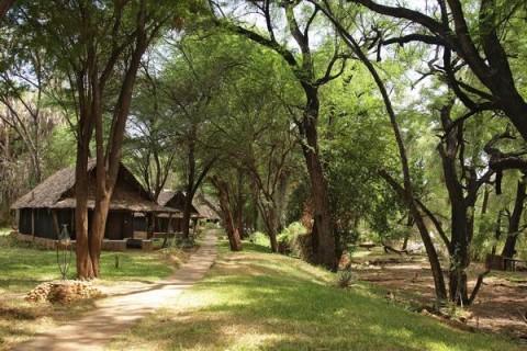 Kenia Safari Samburo Nationalpark