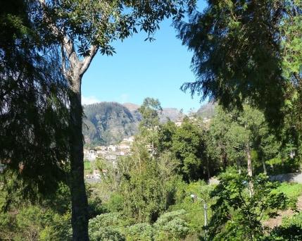 Madeira_Monte