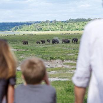 Safariabenteuer für die ganze Familie