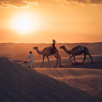 Lassen Sie sich auf dieser Oman Reise verzaubern von dem facettenreichen Sultanat