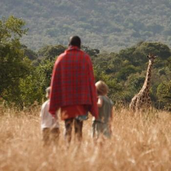 Exklusive Familiensafari