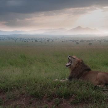 Ugandas verborgene Schätze