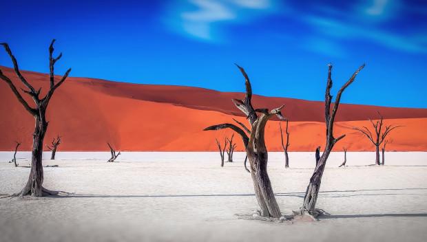Wüste & Wildnis