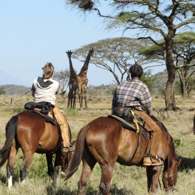 8 Tage Reiterhof am Kilimanjaro