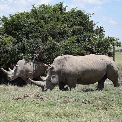 Kenias versteckte Schönheiten