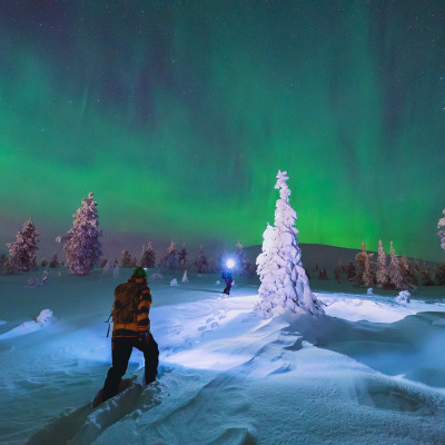 Polarlichtsafari