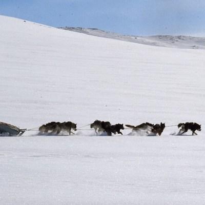 Wildnis Abenteuer schwedisch Lappland