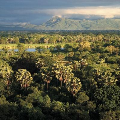Safari durch Südtansania & Malawi