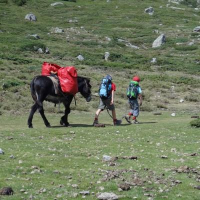 Eseltrekking durch Korsika