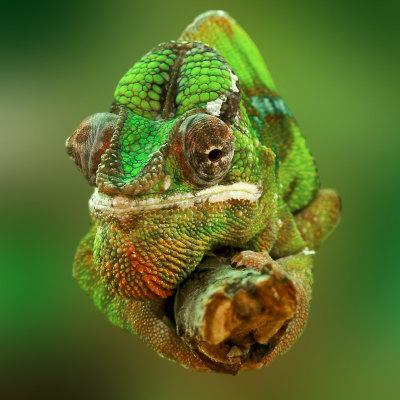 Quer durch Madagaskar