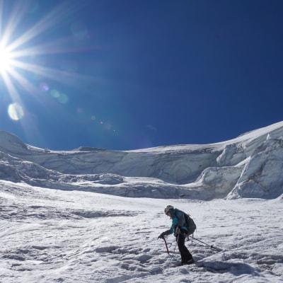 Einführung in das Bergsteigen im Fels und auf Gletscher