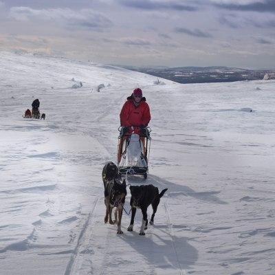 Abenteuer schwedisch Lappland