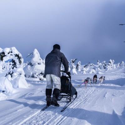 Short Lapland Break