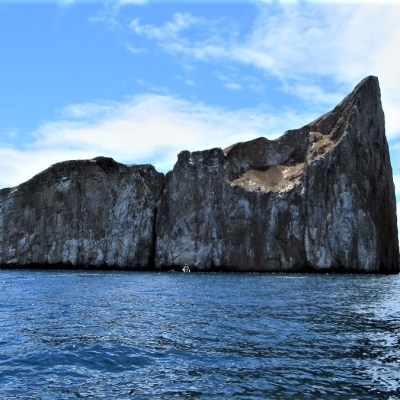 8 Tage/ 7 Nächte Inselhopping Galapagos