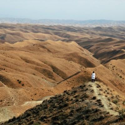 Land zwischen Tradition und Moderne. Nur der eigene Eindruck zählt Die klassische Iran Reise ab 14 Tage Dauer