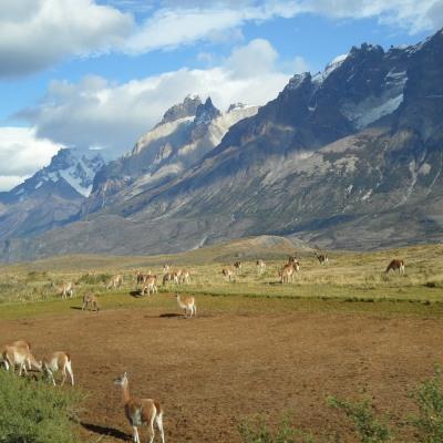 Der Wanderer hat keinen Weg, der Weg entsteht beim Gehen. Patagonia Pur. Ein spektakuläres Naturerlebnis