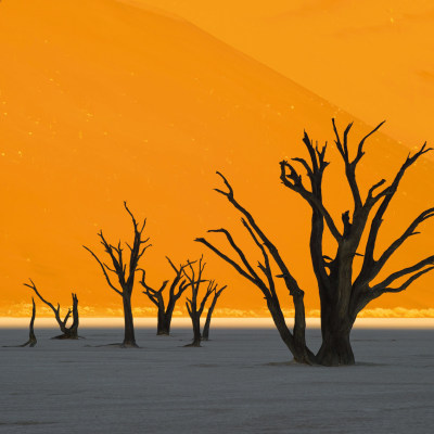 "Kleingruppenreise ""Best of Namibia"""