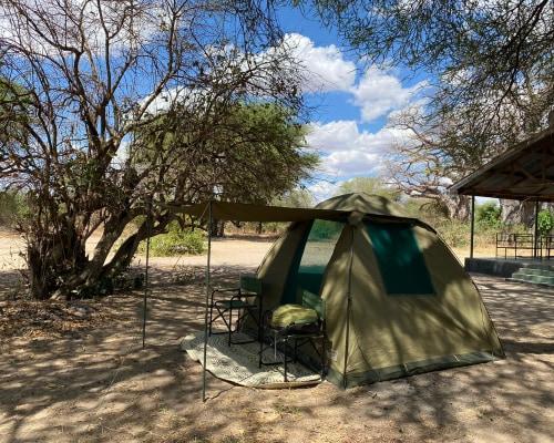 Campingsafari in der Serengeti