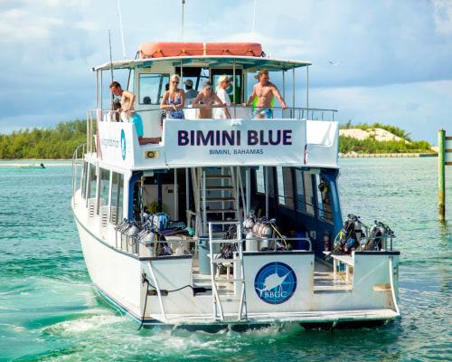 Bimini Big Game Club Dive Center