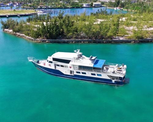 Echtes Hai-light! RCF Bahamas Master Vollcharter 2023