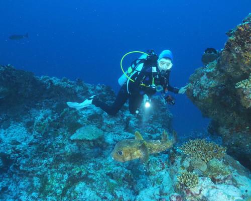 Dive Point Fuvahmulah
