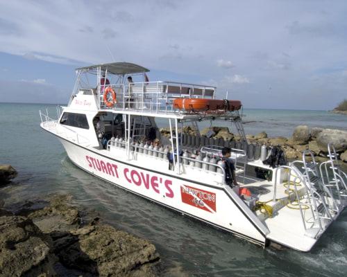 Stuart Cove Dive's Bahamas