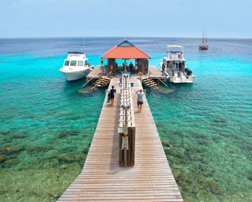 Divi Dive Bonaire