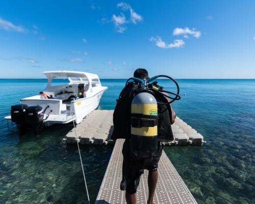 Orca Dive Club Mauritius