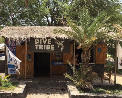 Dive Tribe Dive Center