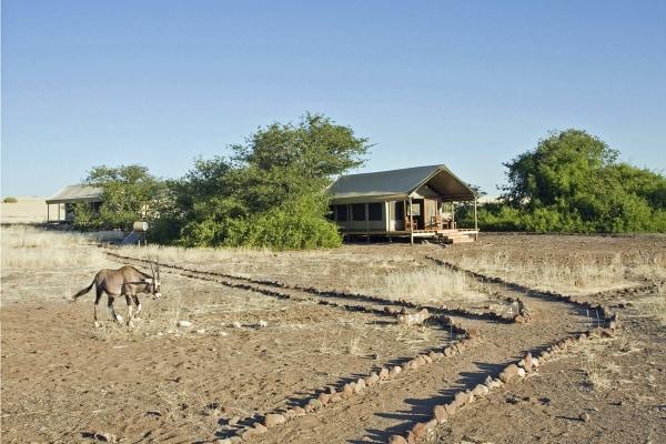 Desert Rhino Camp – Wilderness Safaris