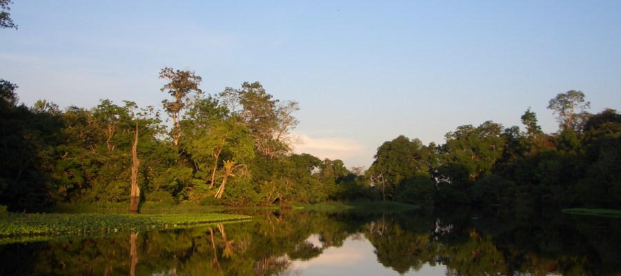 Amazonas_Pantanal Meine Welt Reisen