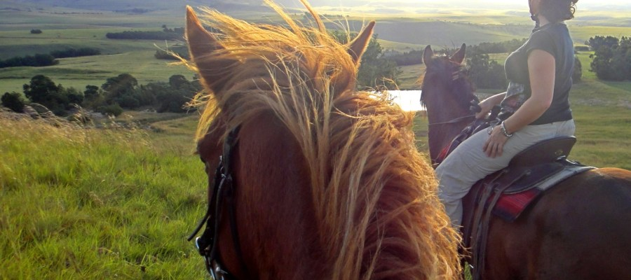 Horse Riding_Drakensberg_SA-Experience.JPG