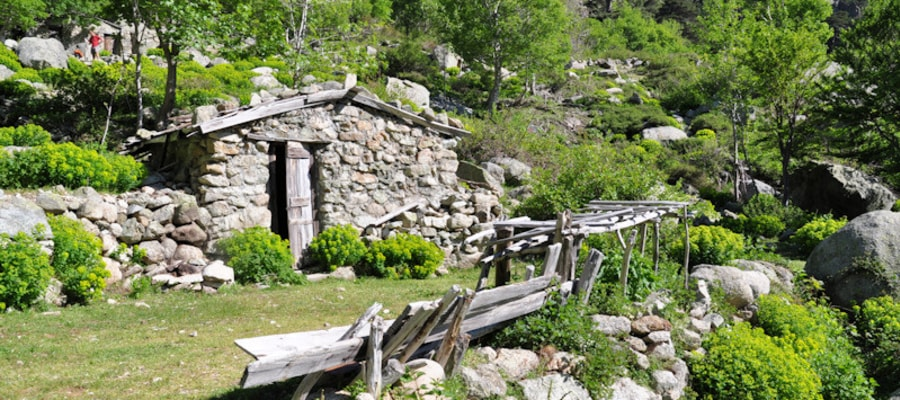 Bergerie Korsika meinewelt-reisen