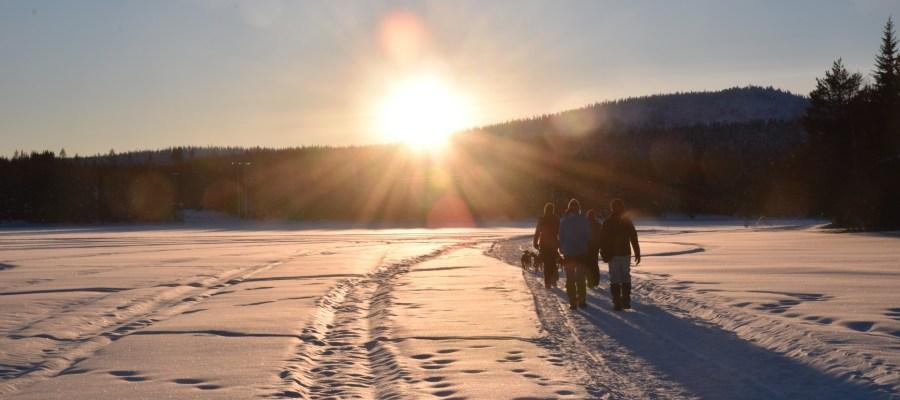finnland-winter-spaziergang