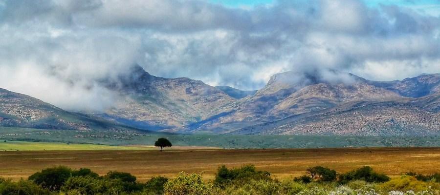 Karoo Suedafrika