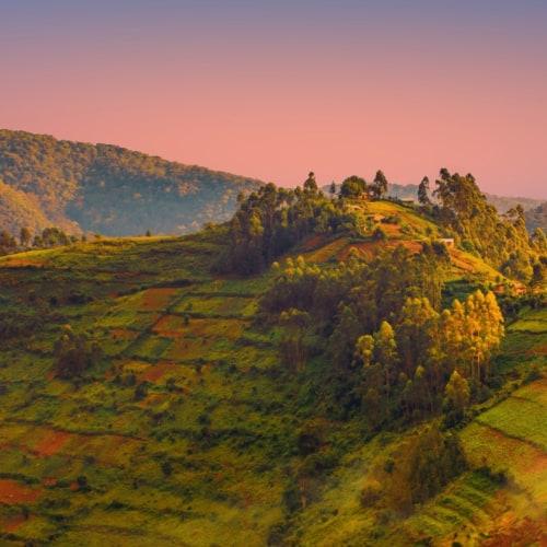 Ruanda Rundreise